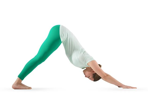 Tư thế Yoga Downward-Facing Dog