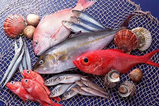 Ăn cá giúp giảm mỡ bụng dưới
