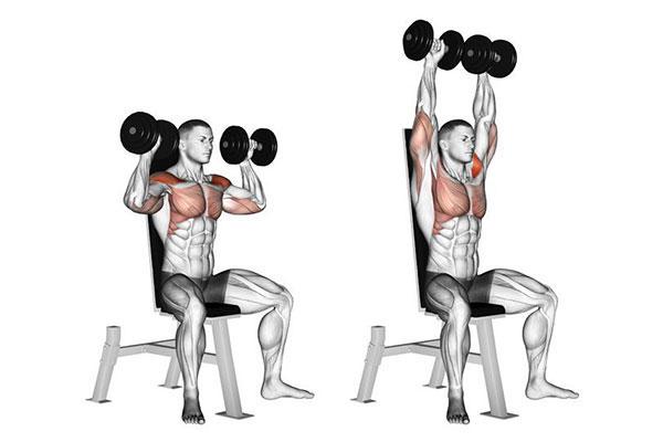 Bài tập Dumbbell Shoulder Press